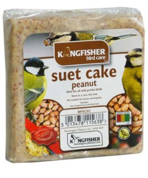 Bird Food Suet Cake With Peanut 300g BP
