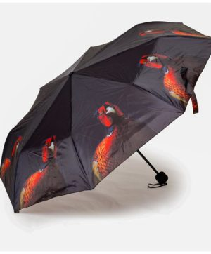 Umbrella Folding Pheasant CM