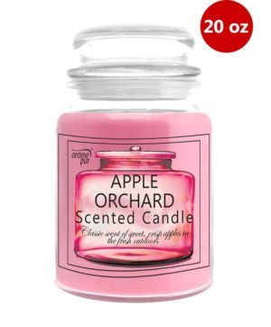 Jar Candle With Lid 20oz Apple Orchard